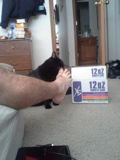 My cat loves my foot.  :p