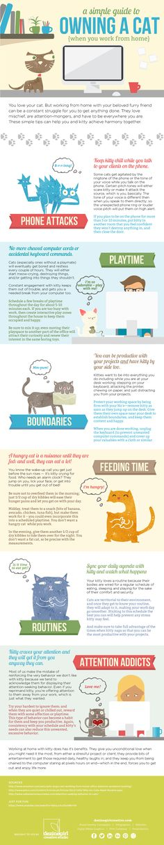 A Simple Guide to Owning a Cat When You Work From Home #infographic #Pet #Cats #Home
