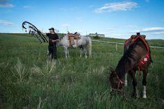 Anthony S. Karen, Pine Ridge Indian Reservation. Pine Ridge, South Dakota.