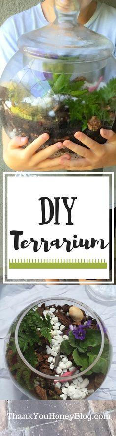 DIY Terrarium, DIY, How To, Tutorial, Planting, Gardening,  Terrarium, Kids DIY, African Violets, Ferns, Dinosaurs, Kids Activities, Activity, Plants, http://thankyouhoneyblog.com, #FreeToBe, {ad}