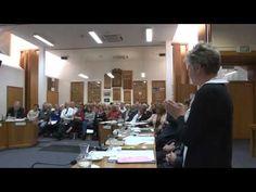 Part 4 of the WDC meeting about Hunderwasser Wairau Maori Art Centre