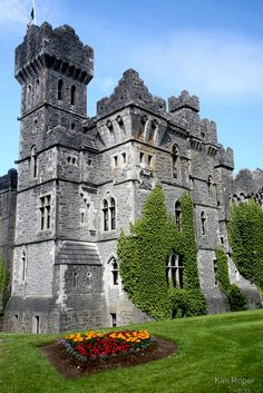 The Ashford Castle in County Mayo, Ireland. : The Ashford Castle in County Mayo, Ireland. Ashford Castle Hotel, Ashford Castle Ireland, Castle Hotels In Ireland, Castles In Ireland, Castle Ruins, Castle Scotland, Highlands Scotland, Skye Scotland, Scotland Travel