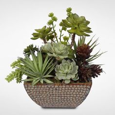 Attractive Succulent Centerpiece in Ceramic Pot Make your space a little sweeter with the addition of a pretty vase full of faux succulents to brighten any space in your home. Perfect for an accent table or kitchen countertop, this lovely, low-key, su Types Of Succulents, Artificial Succulents, Faux Succulents, Succulent Pots, Planting Succulents, Succulent Care, Succulent Centerpieces, Succulent Arrangements, Succulent Landscaping