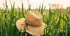 Jokaisen tulisi viettää sopivasti rento kesäloma. Onko sinusta siihen?  http://www.tehylehti.fi/fi/lehti/blogit/mainio/rento-kesaloma  #kesä #loma #kesäloma