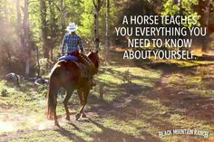"""A horse teaches you everything you need to know about yourself."" #quote"
