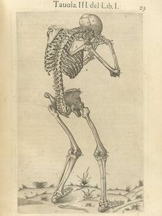 Page 29 of Juan Valverde de Amusco's Anatomia del corpo humano, 1560 featuring a skeleton that is standing facing away with its skull resting on its hands. From the collection of the National Library of Medicine. Visit: http://www.nlm.nih.gov/exhibition/historicalanatomies/valverde_home.html