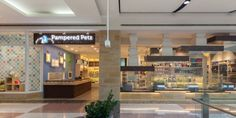 Pampered Petz | Rptecture Architects