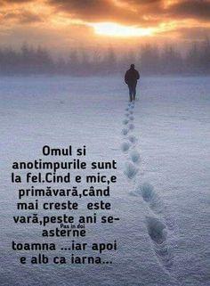 Italian Quotes, Dalai Lama, Travel Quotes, Motto, Animals Beautiful, Cool Words, Spirituality, Self, Education