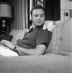 Marlon Brando and his cat