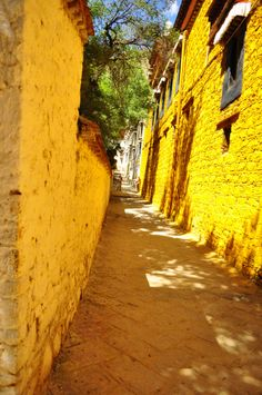 The Sera Monastery is one of the three most important monasteries in Lhasa, the Holy City of Tibetan Buddhism. The others are the Drepung and Ganden Monasteries. They are dedicated to the Gelugpa or Yellow Hat Sect of Tibetan Buddhism and are, or at least were, university monasteries.