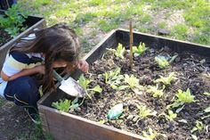 10 key elements for a Reggio-inspired playground