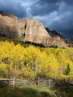 Aspens in the Cimarron Mountains, Colorado : Mountain photography by Aaron Spong