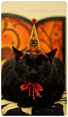 Johanna's black cat, Jack, dressed for Halloween and wearing his very own illustrated party hat - kitty sized!