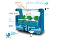 sealeaf provides floating hydroponic farming for coastal cities - designboom | architecture & design magazine