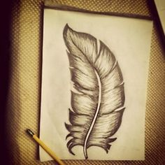My feather drawing #feather #drawing #sketch #pencil