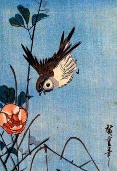 Utagawa Hiroshige Sparrows and Wild Rose Art Print Poster Photo