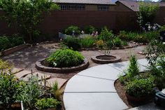 Gravel garden with paver path