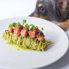 Recipe by SnowcologyCreation Basil pesto pasta with charred aburi salmon Cookniche linking the culinary world Gourmet Recipes, Cooking Recipes, Gourmet Desserts, Gourmet Foods, Basil Pesto Pasta, Salmon Pesto Pasta, Gourmet Food Plating, Food Plating Techniques, Wine Tasting