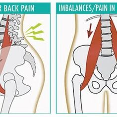 10 Psoas-Releasing Stretches To Stabilize The Spine And Relieve Low Back & Knee Pain - Live Love Fruit Fitness Workouts, Hip Workout, Yoga Fitness, Health Fitness, Fitness Diet, Muscle Stretches, Back Pain Exercises, Yoga Exercises, Hip Flexor Exercises