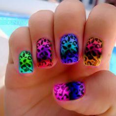 cheetah: perfect for spring break