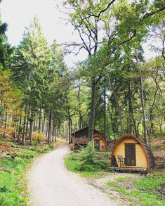 Travel With Kids, Glamping, Netherlands, Holland, Tiny House, Places To Go, Eco Friendly, Around The Worlds, Hiking