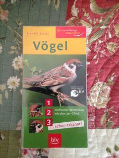 Der zuverlässige Naturführer, Vögel. In meinem Bücherregal.