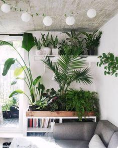 Jeannie Phan - Green studio space @studioplants /jeanniephan/