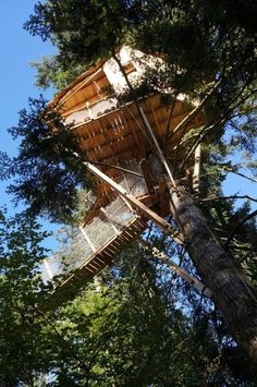 Venez séjourner en pleine nature dans une cabane dans les arbres originale et de charme, au cœur de l'Auvergne. Hébergements insolites, activités de pleine nature, gastronomie locale... 100% Nature, 100% Auvergne.
