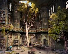 ~How do trees end up growing up in this library...that's still in pretty good shape?.. Overgrown library ...
