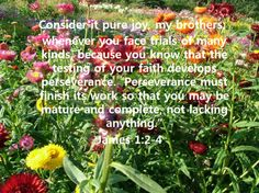 CONSIDER IT PURE JOY,   MY BROTHERS,  WHENEVER YOU FACE TRAILS OF MANY KINDS, BECAUSE YOU KNOW THAT THE TESTING OF YOUR FAITH DEVELOPS PERSERVERANCE.  PERSEVANCE MUST FINSIH ITS WORK SO THAT YOU MAY BE MATURE AND COMPLETE, NOT LACKING ANYTHING James 1:2-4