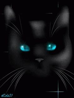 The perfect CatEyes Fantasy Animated GIF for your conversation. Discover and Share the best GIFs on Tenor. Gothic Wallpaper, Perfect Cat Eye, Good Night Greetings, Cat Eyes, Cat Gif, Animated Gif, Cats And Kittens, Backgrounds, Kitty