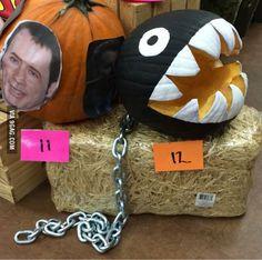 Nice pumpkin chain chomp