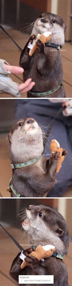 Pas touche à mon doudou !!