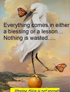 Everything comes in either a blessing or a lesson.Nothing is wasted. A Blessing, Blessed, Painting, Inspiration, Wisdom, Art, Quotes, Sayings, Reiki