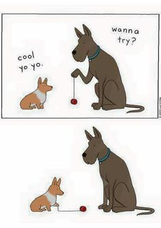 Omg I just laughed so hard!!!