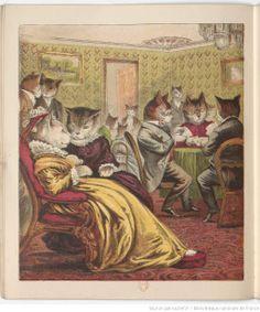 * Une soirée dans le monde des chats par H. F. 1877
