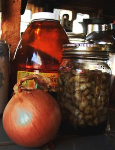 Onion Poultices, Syrups and Tinctures- an old and effective treatment for insect stings and bites, as well as bruises, sprains, strains.