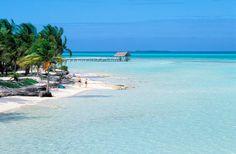 4 of the best spots in the jardines del rey Cuba Resorts, Cuba Beaches, Jamaican Holidays, Cayo Coco Cuba, Travel Around The World, Around The Worlds, Beach Place, Cuba Travel, Havana Cuba