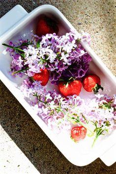 Syreeniä voi käyttää syömällä kukkia, uuttamalla öljyihin taikka nesteisiin, sekä eteerisenä öljynä.Syreenin eteerinen öljy valmistetaan syreenin lehdistä höyrytislauksella. Se on erittäin vahvaa,…