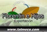 Cotton and Tobacco Cultivation and Production in Paraguay - Florentin e Hijos producción y exportación de fibra de algodón y hojas de tabaco en Paraguay.