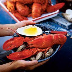 Lobster Guide To Buying, Storing, Preparing, Cooking, Disassembling and Dining.