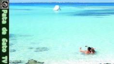 ¿Cuándo visitar Cancún y dónde hospedarse? / When to visit Cancun and wh...