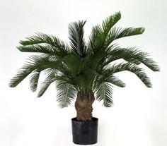 CYCUS Palm Artificiale x 22 Lvs. Green H. 80 cm, http://www.amazon.it/dp/B00BFQ0PQ2/ref=cm_sw_r_pi_awdl_4Xyqub1QKHZ2P