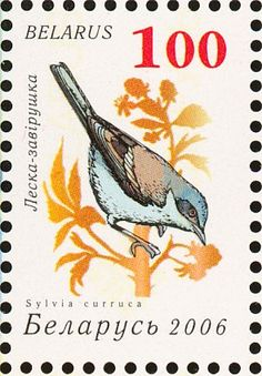 Lesser Whitethroat stamps - mainly images - gallery format