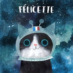 "2,676 Likes, 41 Comments - ROZY (@angierozelaar) on Instagram: ""63/100 Félicette was the first ever astrocat, sent into space in 1963 by the French space agency…"""