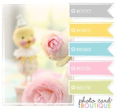 Color Crush Palette · 8.2.2011 - Photo Card Boutique, LLC