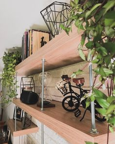 Indoor Plants, Woods, Dining, Interior Design, Architecture, Decoration, House, Furniture, Instagram