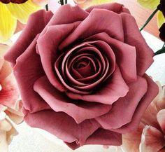 450 Mejores Imágenes De Rosas De Colores Beautiful Flowers