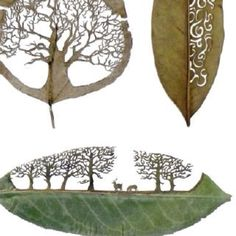 Real art. Real leaves. Amazing
