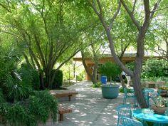 backyards on pinterest pergolas desert backyard and landscaping